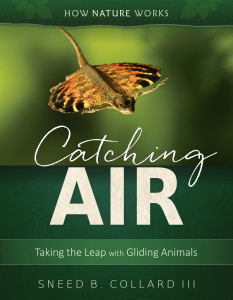 Catching Air: Taking the Leap with Gliding Animals (Tilbury House, Spring 2017)