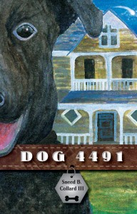 Dog 4491, Bucking Horse Books, 2013 (Distributed by Mountain Press)