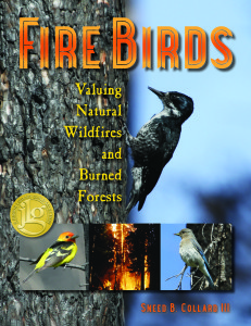 Fire Birds has been racking up terrific reviews and receiving a lot of attention--no surprise given this year's record-breaking heat!