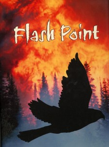 Flash Point, Peachtree Publishers, 2007
