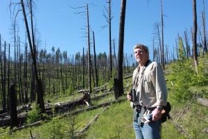 Biologist Dick Hutto in the Black Mountain burn area near Missoula, Montana.