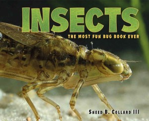 Insects: The Most Fun Bug Book Ever (Charlesbridge Publishing, March 2017)