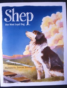 Shep—Our Most Loyal Dog