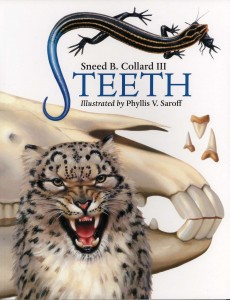 Teeth, Charlesbridge Publishing, 2008