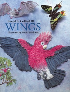 WIngs, Charlesbridge Publishing, 2008
